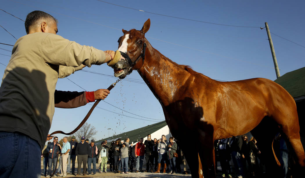 Kentucky Derby hopeful Justify gets a bath after a morning workout at Churchill Downs Tuesday, May 1, 2018, in Louisville, Ky. The 144th running of the Kentucky Derby is scheduled for Saturday, Ma ...