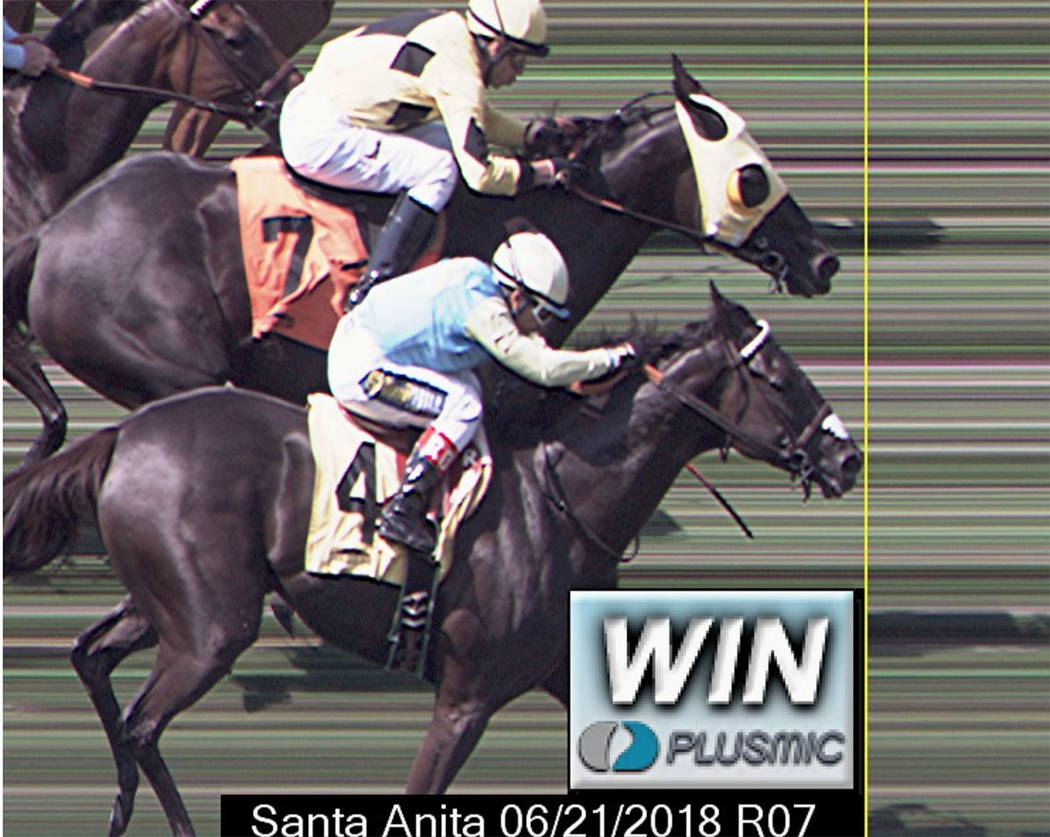Moonless Sky, a filly partly owned by MyRacehorse investors, finishes second by a nose in an allowance optional claiming race at Santa Anita on June 21. (Santa Anita Park)