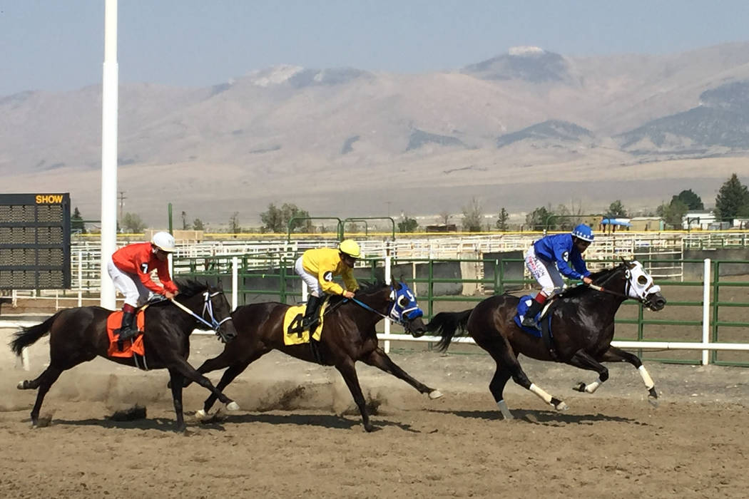 Down the stretch they come at the White Pine Races on Sunday, August 19, 2018 in Ely. (Mike Brunker/Las Vegas Review-Journal)