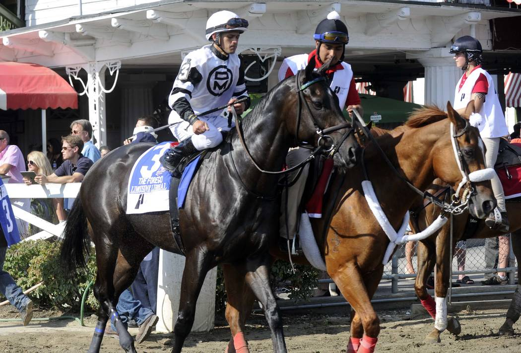 Limousine Liberal with Javier Castellano aboard during the post parade before The Priority One Jets Forego Stakes horse race at Saratoga Race Course in Saratoga Springs, N.Y., Saturday, Aug. 27, ...