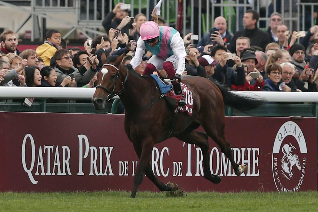 Italian Lanfranco Dettori rides British horse Enable to win the Qatar Prix de l'Arc de Triomphe horse race at the Longchamp horse racetrack, outskirts of Paris, France, Sunday, Oct. 7, 2018. (AP P ...