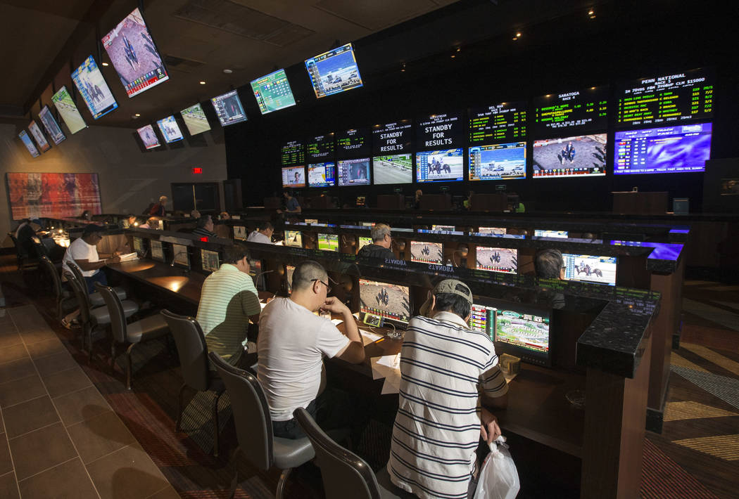 Players try their luck on horse races at the new race and sports book space inside Palace Station in Las Vegas on Thursday, Aug. 23, 2018. Richard Brian Las Vegas Review-Journal @vegasphotograph