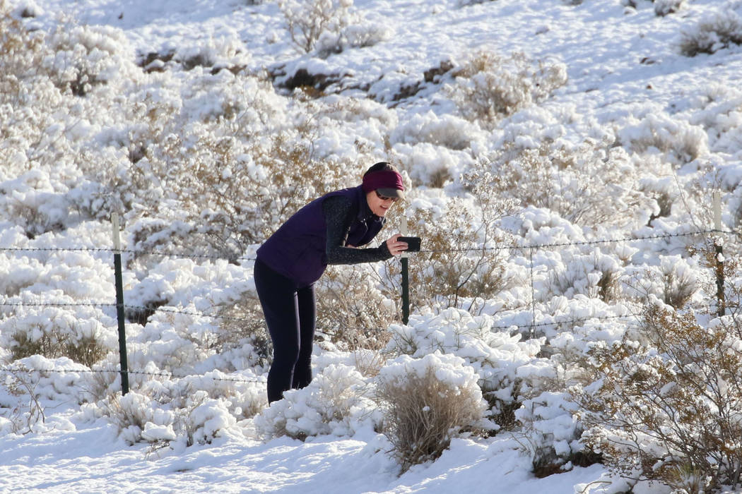 Leigh Morehouse of Summerlin takes a picture of snow covered plants near Red Rock on Monday, Feb. 18, 2019, in Las Vegas. (Bizuayehu Tesfaye/Las Vegas Review-Journal) @bizutesfaye