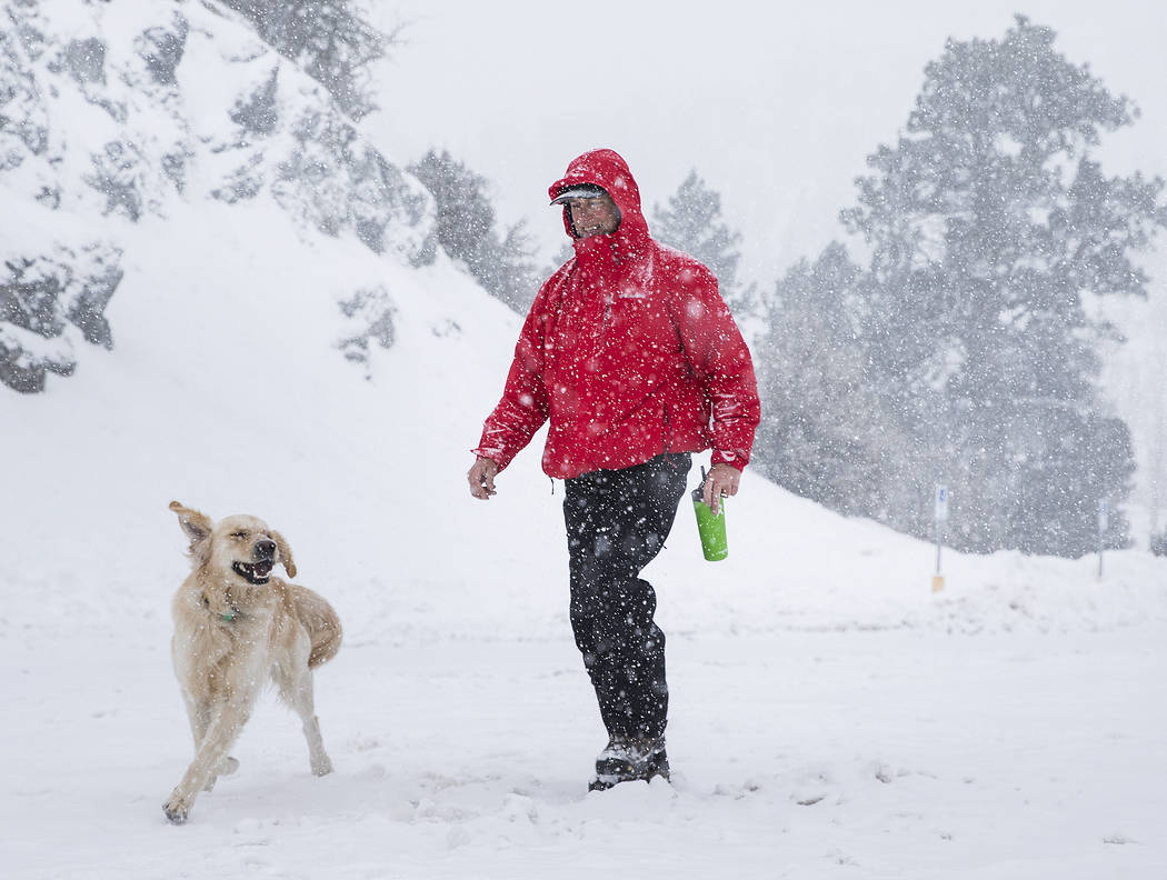 Paul Whitmoyer, right, and golden retriever Kona hike in the snow at Mount Charleston on Wednesday, Feb. 20, 2019, outside Las Vegas. (Benjamin Hager Review-Journal) @BenjaminHphoto