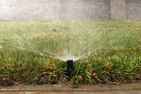 A sprinkler is on to water grass at Green Valley Parkway on Tuesday, March 5, 2019, in Henderson. (Bizuayehu Tesfaye Las Vegas Review-Journal) @bizutesfaye