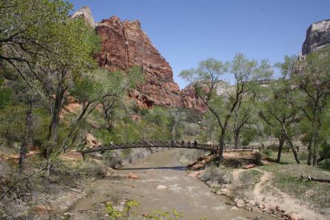 A footbridge is used by hikers to cross over the North Fork of the Virgin River. (Deborah Wall/ ...