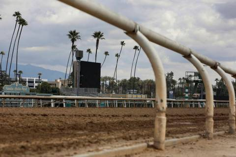 After reaching an agreement to delay implementation of a ban on race-day medication, management ...