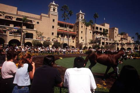 ADVENTURE Race fans check the horses before betting at the Del Mar Thoroughbred Club. (Jeff Sch ...