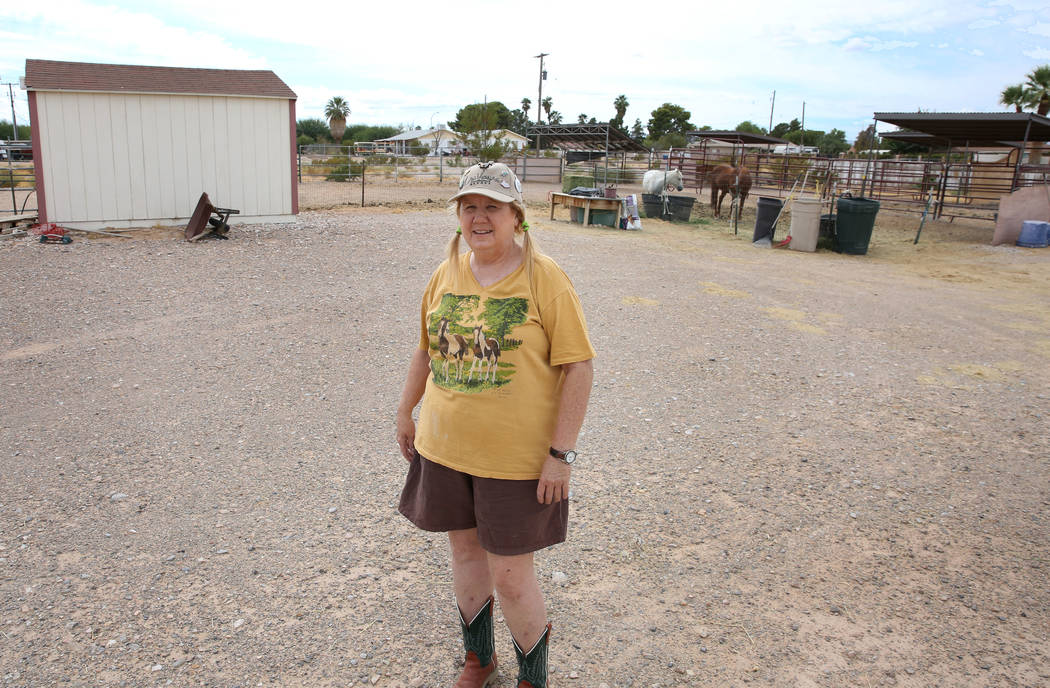 Retiree Susan Lorenz lives on a 1-acre property near Warm Springs Road and Decatur Boulevard in ...