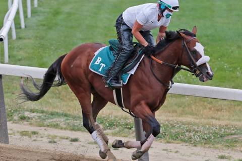 Robin Smullen rides Tiz the Law during a workout at Belmont Park in Elmont, N.Y., Thursday, Jun ...