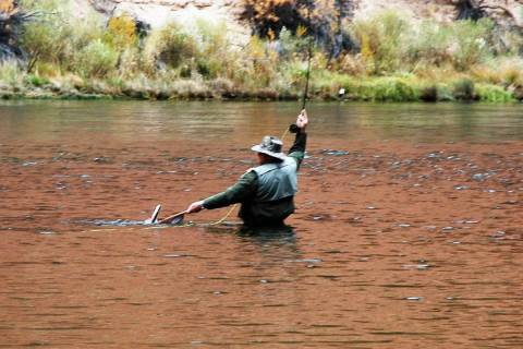 Recreational fishing has seen a significant increase in participation as people seek a respite ...