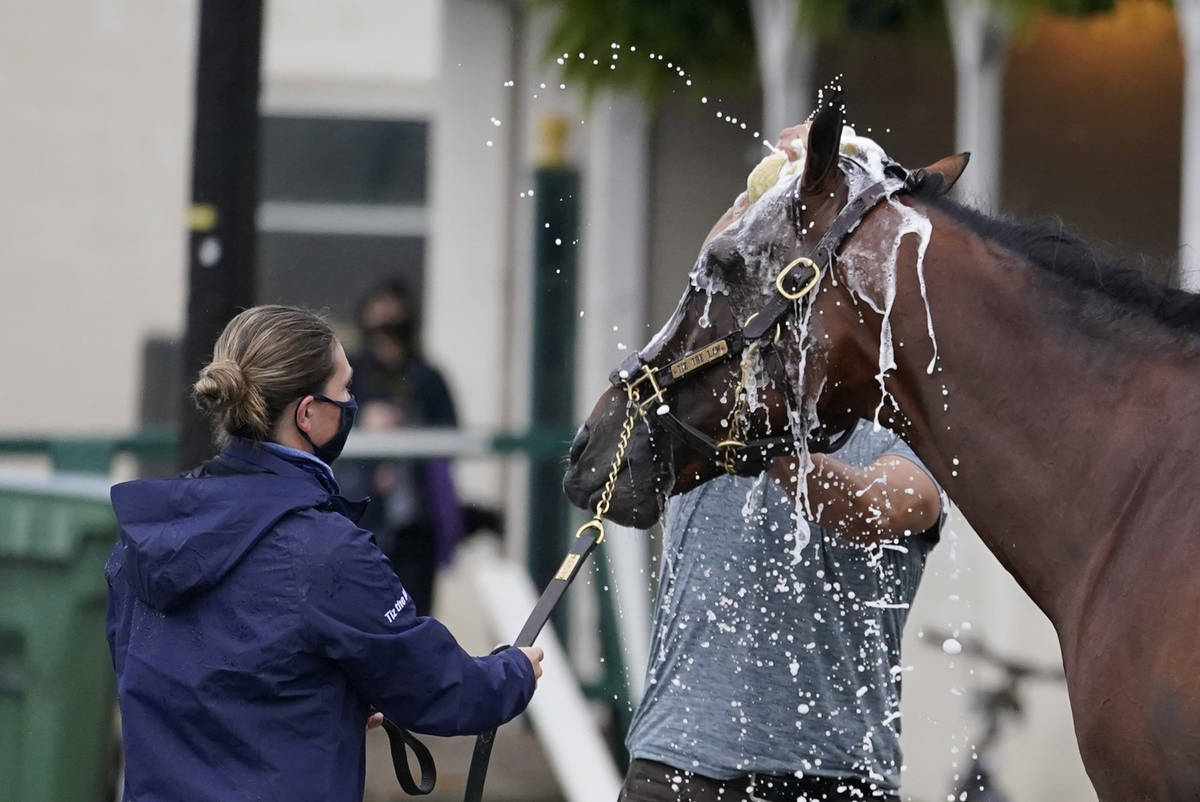 Kentucky Derby entry Tiz the Law get a bath following a workout at Churchill Downs, Thursday, S ...