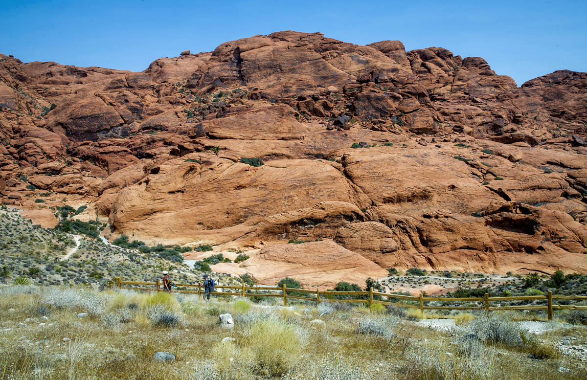 Hikers make their way along the Calico II trail in the Red Rock Canyon National Recreation Area ...