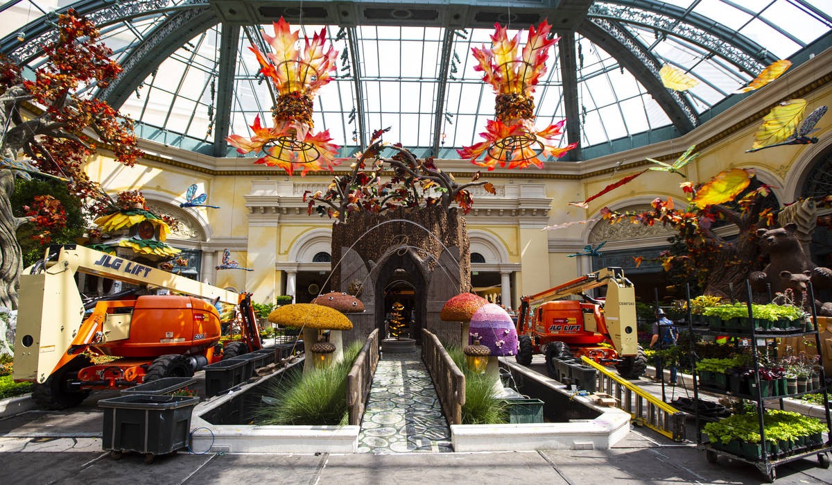 """Contruction and preparation continues for the """"Into the Woods"""" fall display at the Bellagio Con ..."""