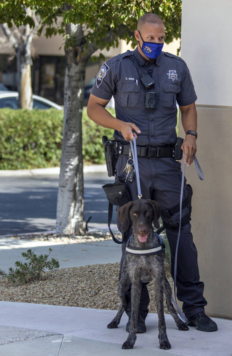 Nevada Highway Patrol Trooper Clifton Davis and Skipper, a German Shorthaired Pointer, stand fo ...