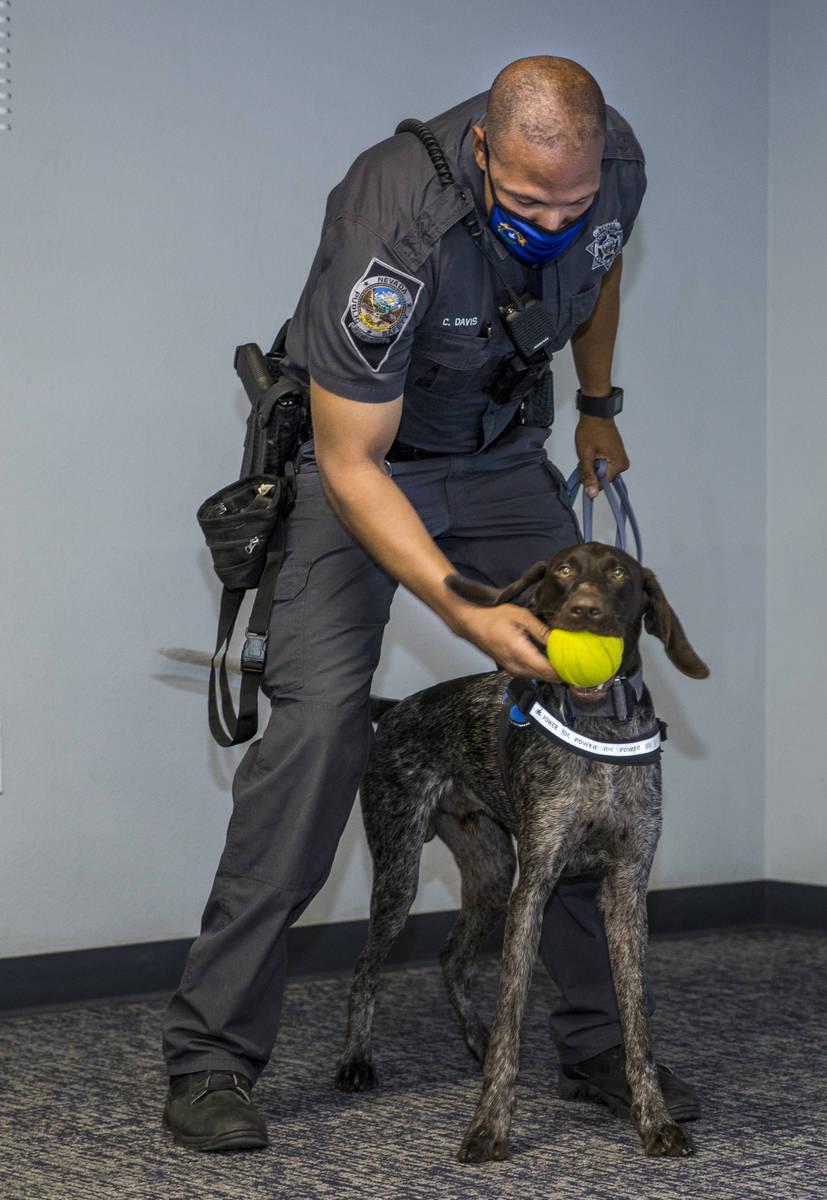 Nevada Highway Patrol Trooper Clifton Davis rewards Skipper, a German shorthaired pointer, foll ...