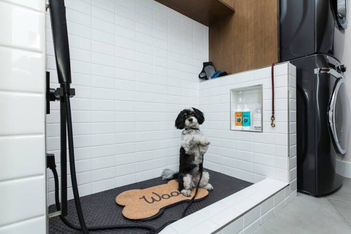 Nova Ridge by Pardee Homes in The Cliffs village offers a dog wash option that's fully custom ...