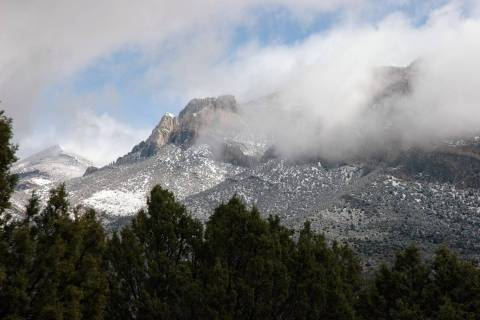Something as simple as a skiff of snow can make all the difference for mule deer hunters, so to ...