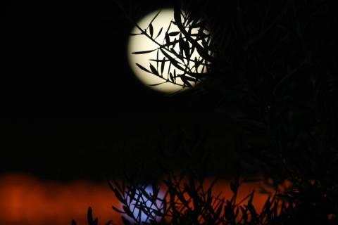 The Blue Moon is seen in Las Vegas, Saturday, Oct. 31, 2020. (Erik Verduzco / Las Vegas Review- ...