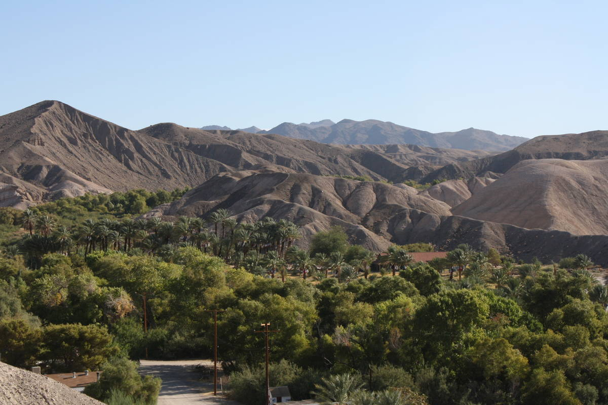 From the Mesa Trail, hikers get a great bird's-eye view of China Ranch Date Farm. (Deborah Wa ...
