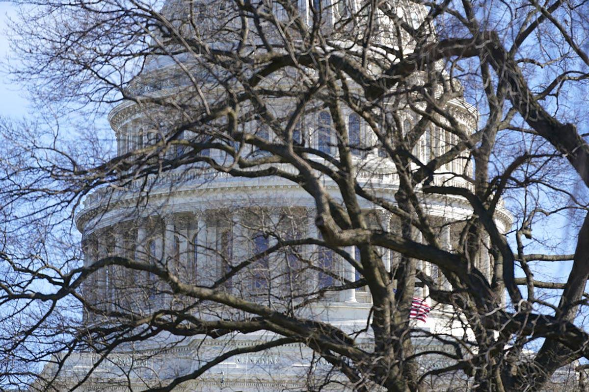 The U.S. Capitol dome stands above bare tree branches, Saturday, Jan. 9, 2021, in Washington. ( ...