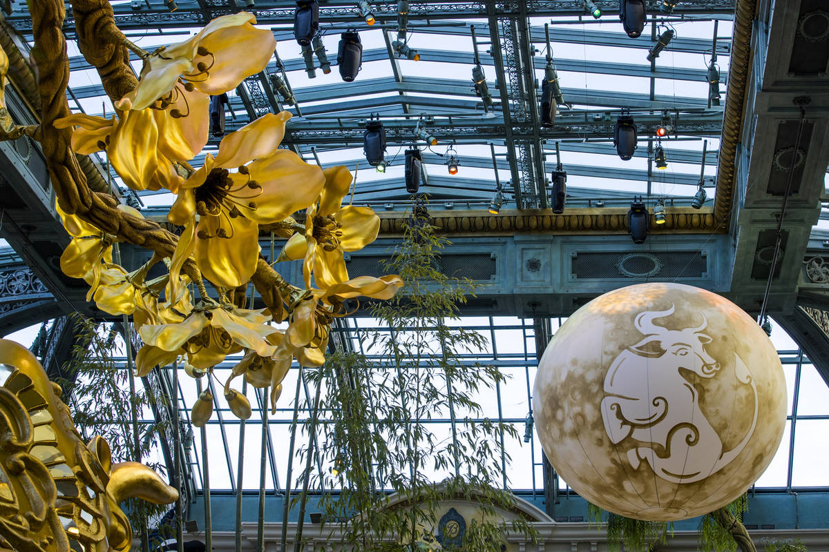 An ox on the moon floats over top as the Bellagio Conservatory & Botanical Gardens debut its di ...
