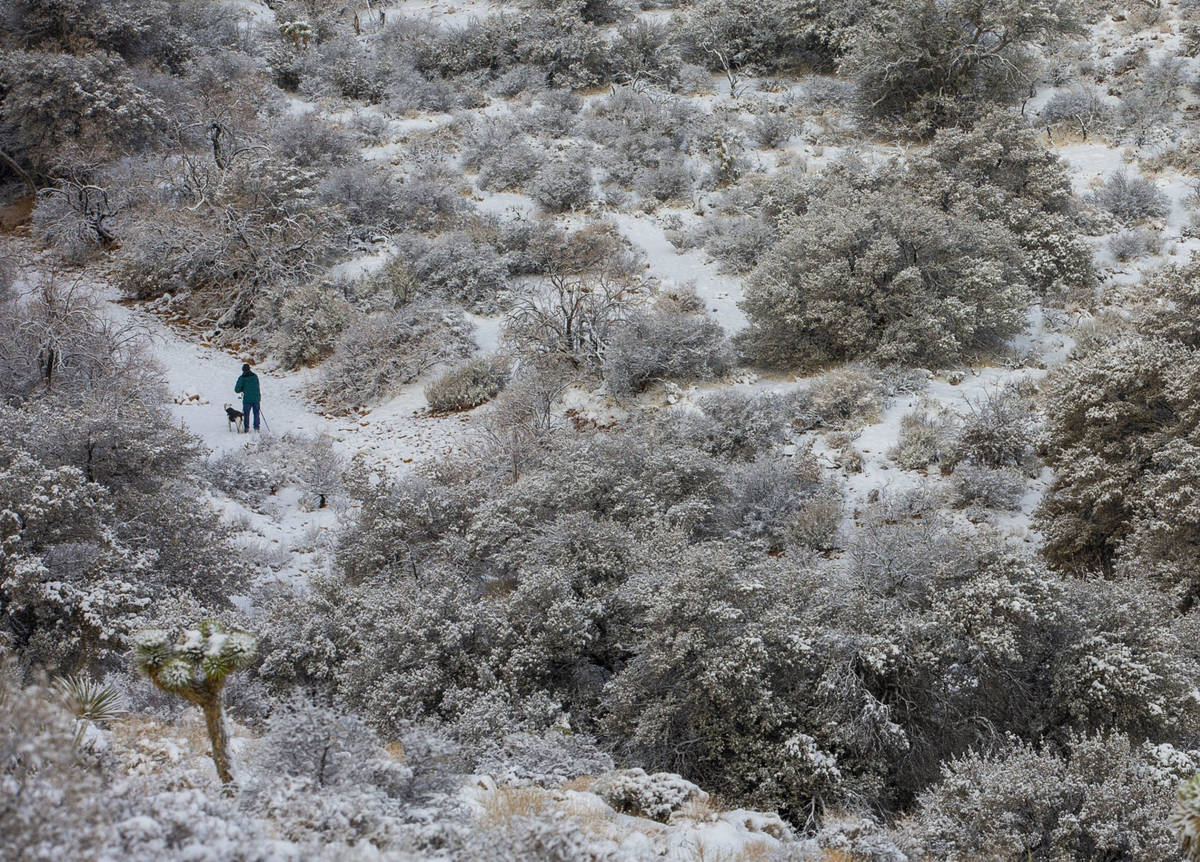 A man hikes with his dog in the valley below the overlook on a snowy day in the Red Rock Conser ...