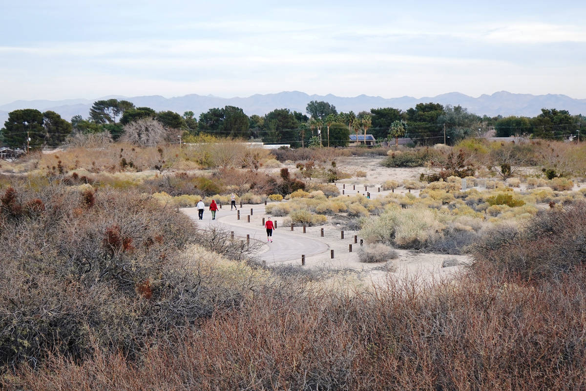Trails meander through the dunes area of Sunset Park.