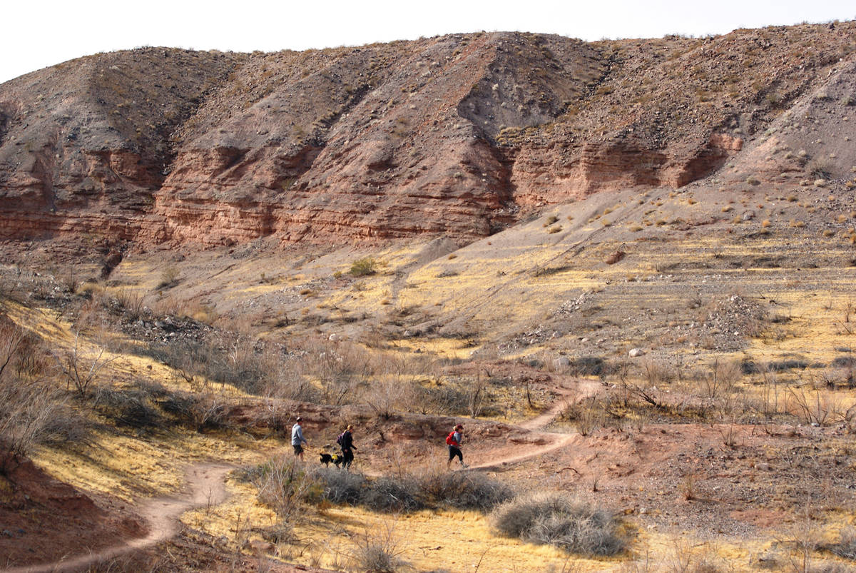 In a picture taken earlier this winter, hikers follow a path that takes them along the lakebed ...