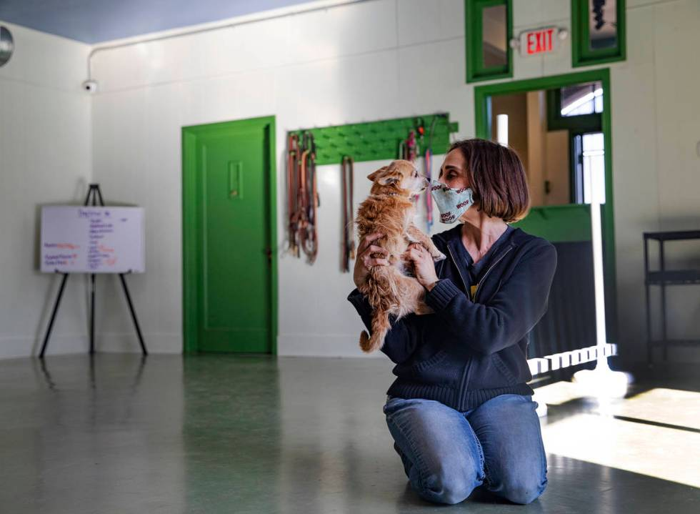 Cathy Brooks, owner of the Hydrant Club, a training facility and private social club for dogs, ...
