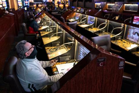 Bruce Kauffman of St. Petersburg, Fla., watches a horse race at the Westgate sportsbook in Las ...
