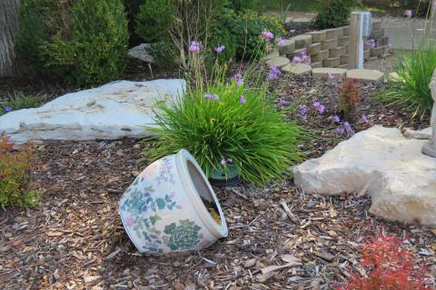 Rocks, mulch, shrubs and social garlic are part of this xeriscape landscape. (Getty Images)