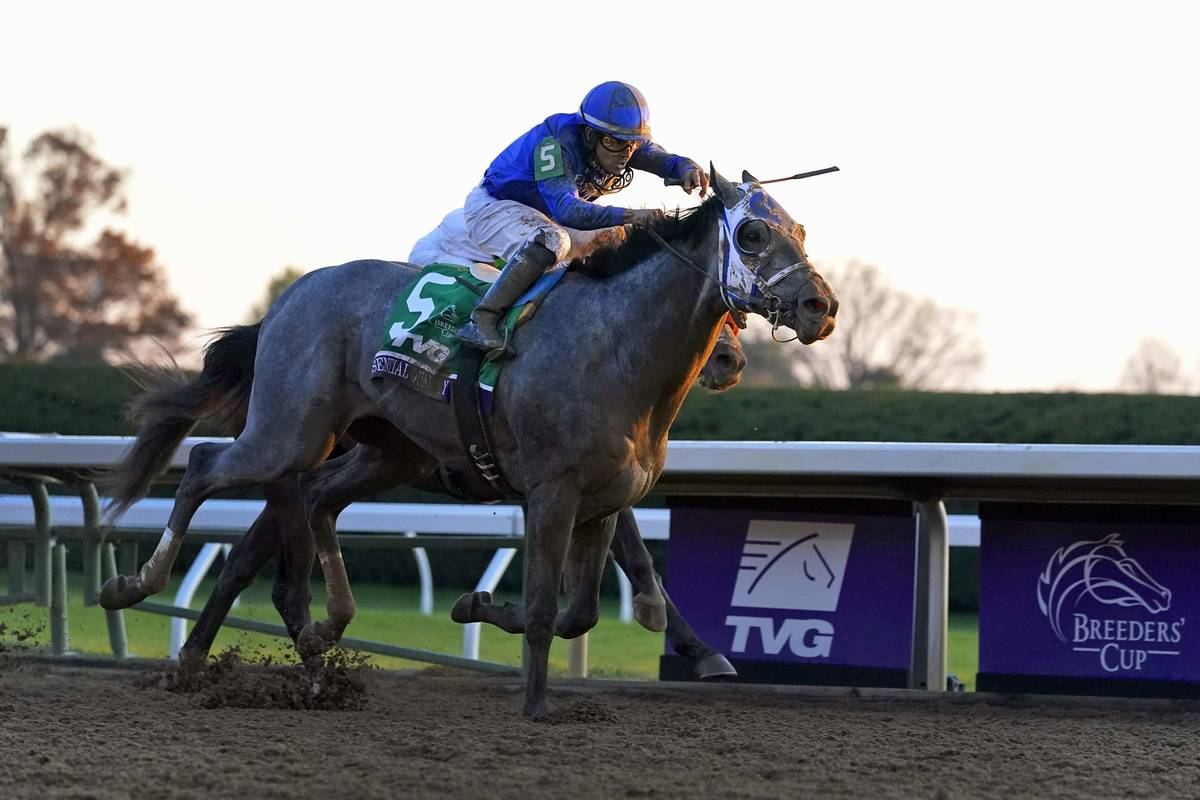 Jockey Luis Saez rides Essential Quality to win the Breeders' Cup Juvenile horse race at Keenel ...