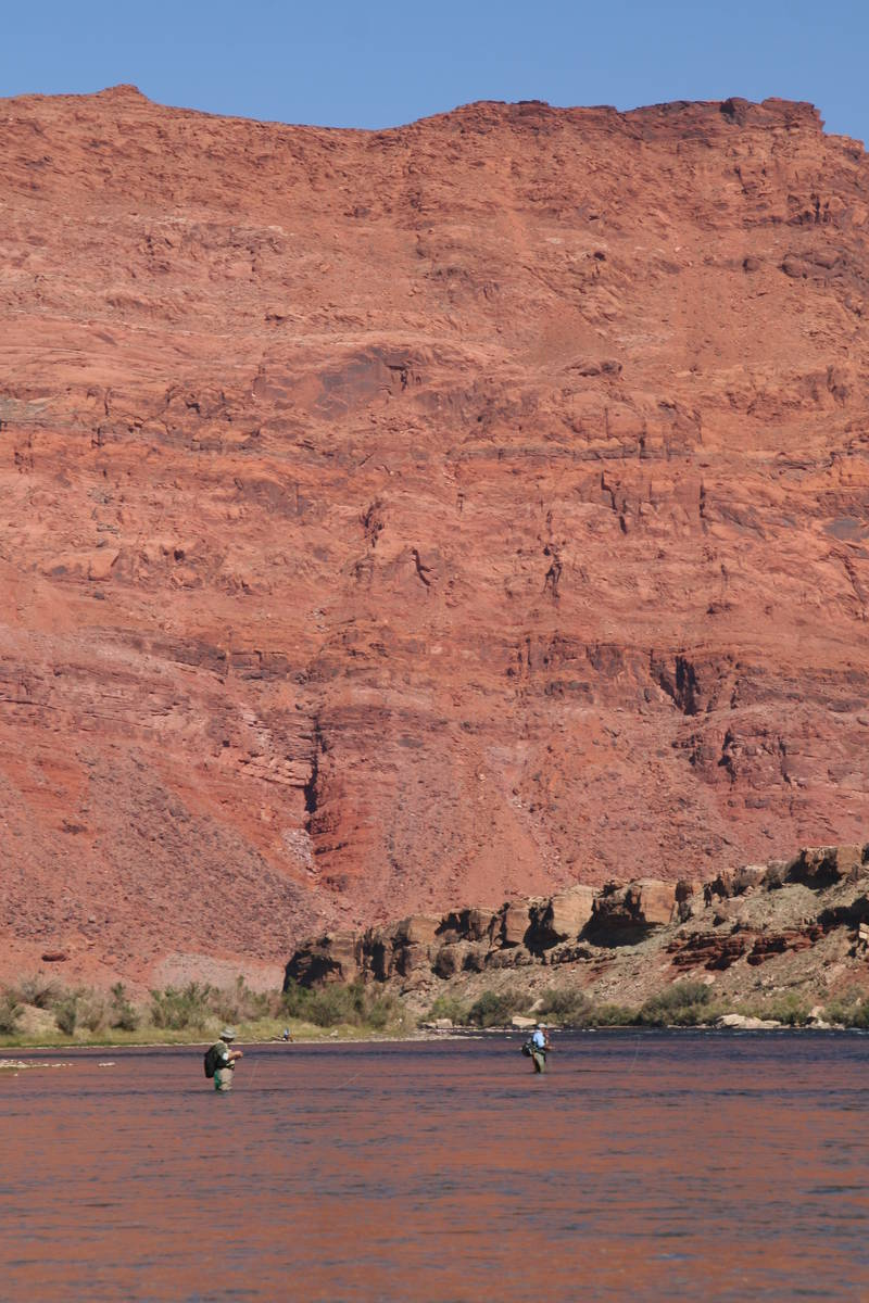 Fly-fishing is a popular activity at Lees Ferry, Arizona. (Deborah Wall Las Vegas Review-Journal)
