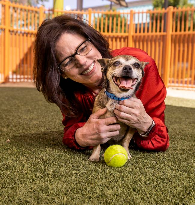 Lied Animal Shelter CEO Christine Robinson with adoptable dog Osso. When she took over at the s ...