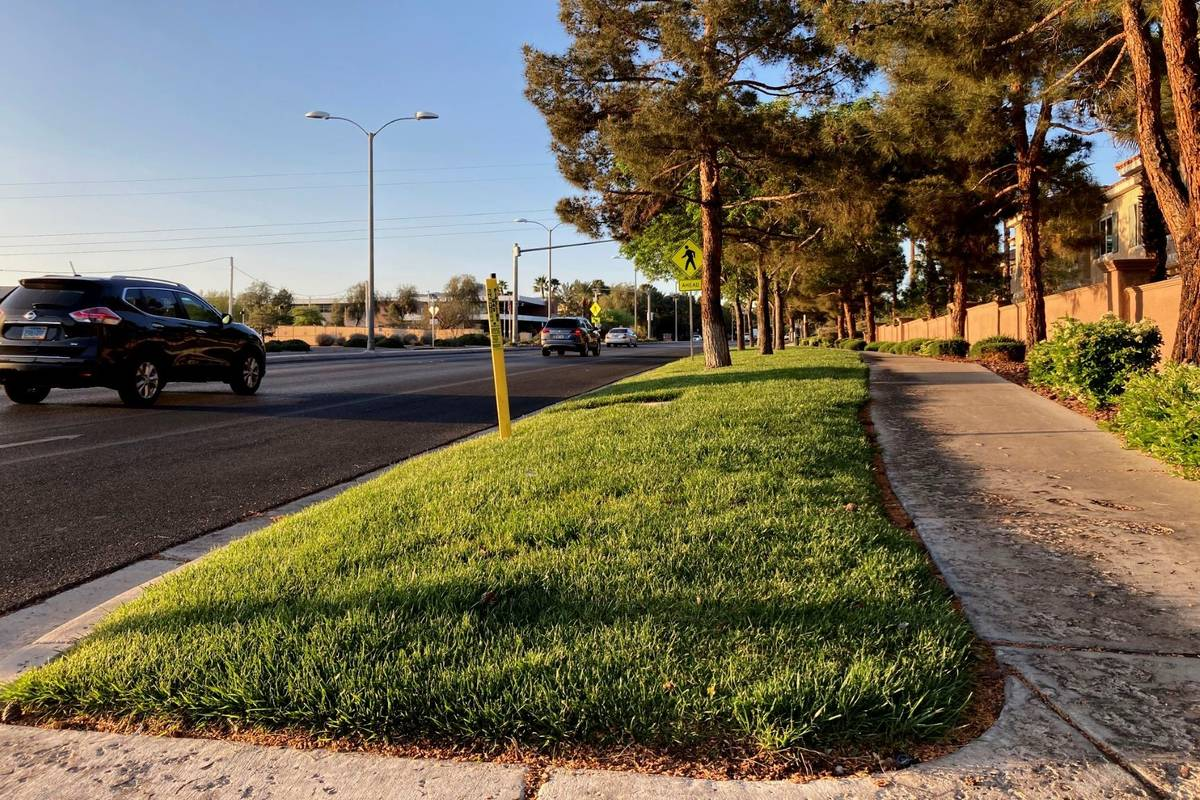 Traffic passes a grassy landscape on Green Valley Parkway in suburban Henderson in April 2021. ...