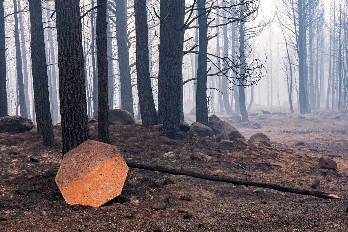 A sign damaged by the Bootleg Fire lies on the ground on Thursday, July 22, 2021, near Paisley, ...