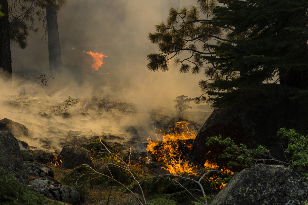 The Tamarack Fire burns around California State Route 88 near Alpine Village, Calif., Friday, J ...