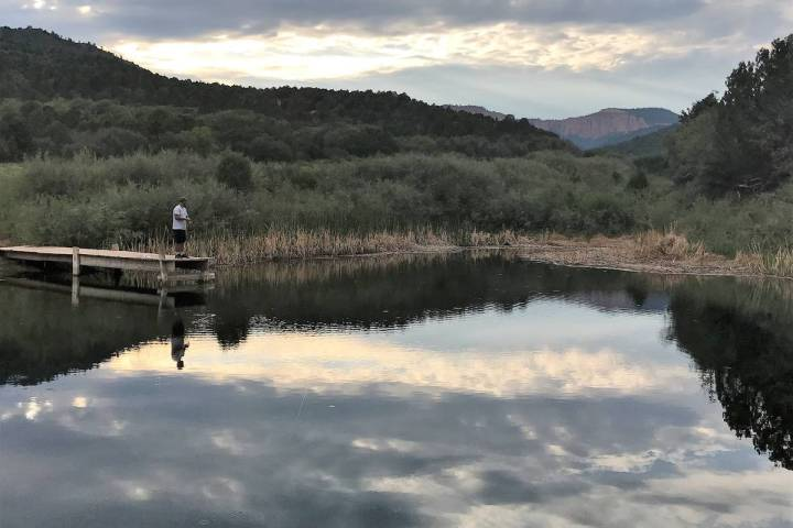 You don't have to fish big water to catch hungry trout. Even a small ranch pond can provid ...