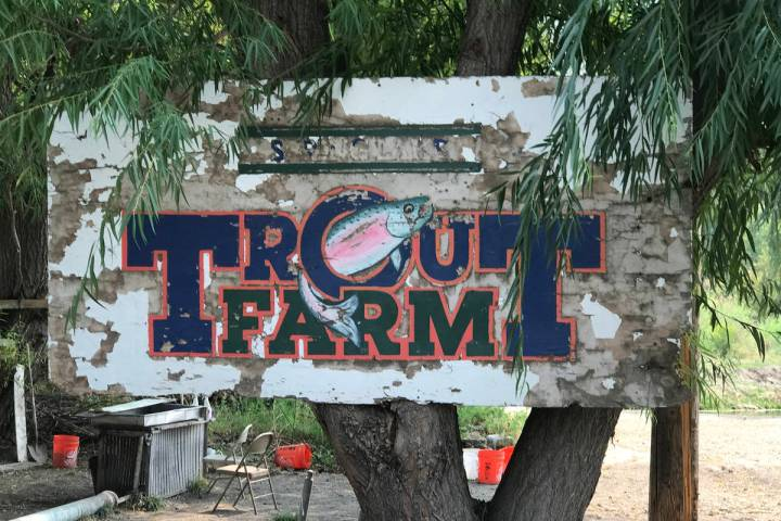 The Trout Farm has been operation since 1912 and provides new anglers with a place to learn bot ...