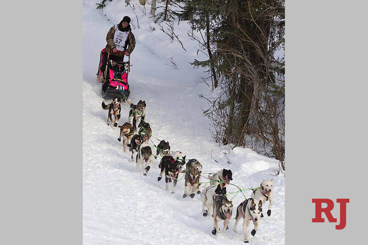 Cadet, lead dog, and Skye, last dog, left, for musher Wade Marrs are shown during the 2013 Idit ...