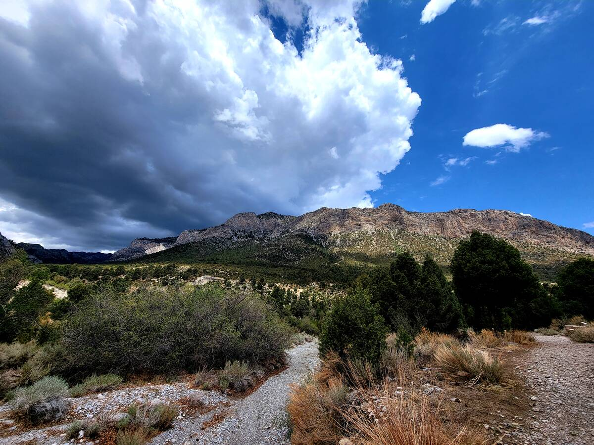 Dramatic clouds and mountain vistas are part of the package on Mount Charleston's Acastus Trail ...