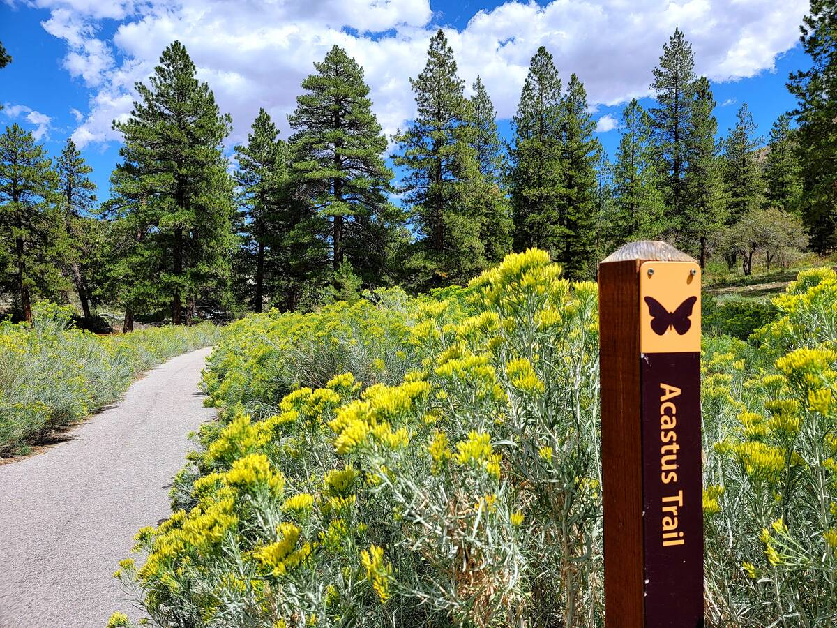 This trail marker is near the Fletcher Canyon parking lot and trail. From there, the trail wind ...