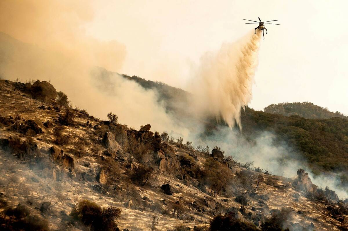 A helicopter drops water on the KNP Complex Fire burning along Generals Highway in Sequoia Nati ...